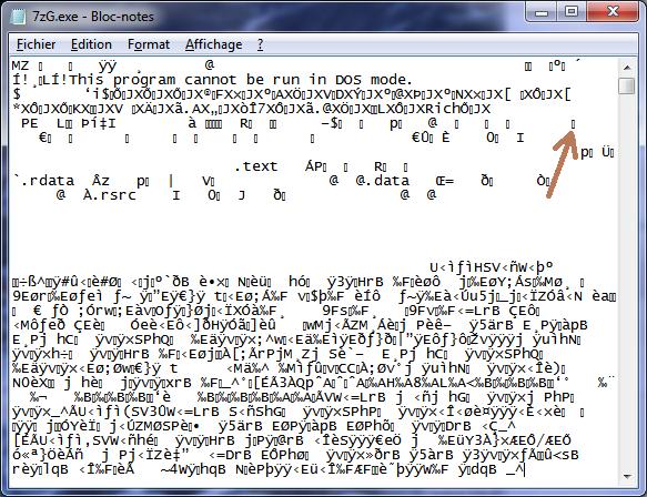 Exemple affichage contenu fichier binaire
