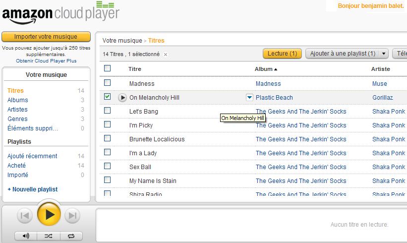 L'interface web de l'application disponible depuis votre navigateur
